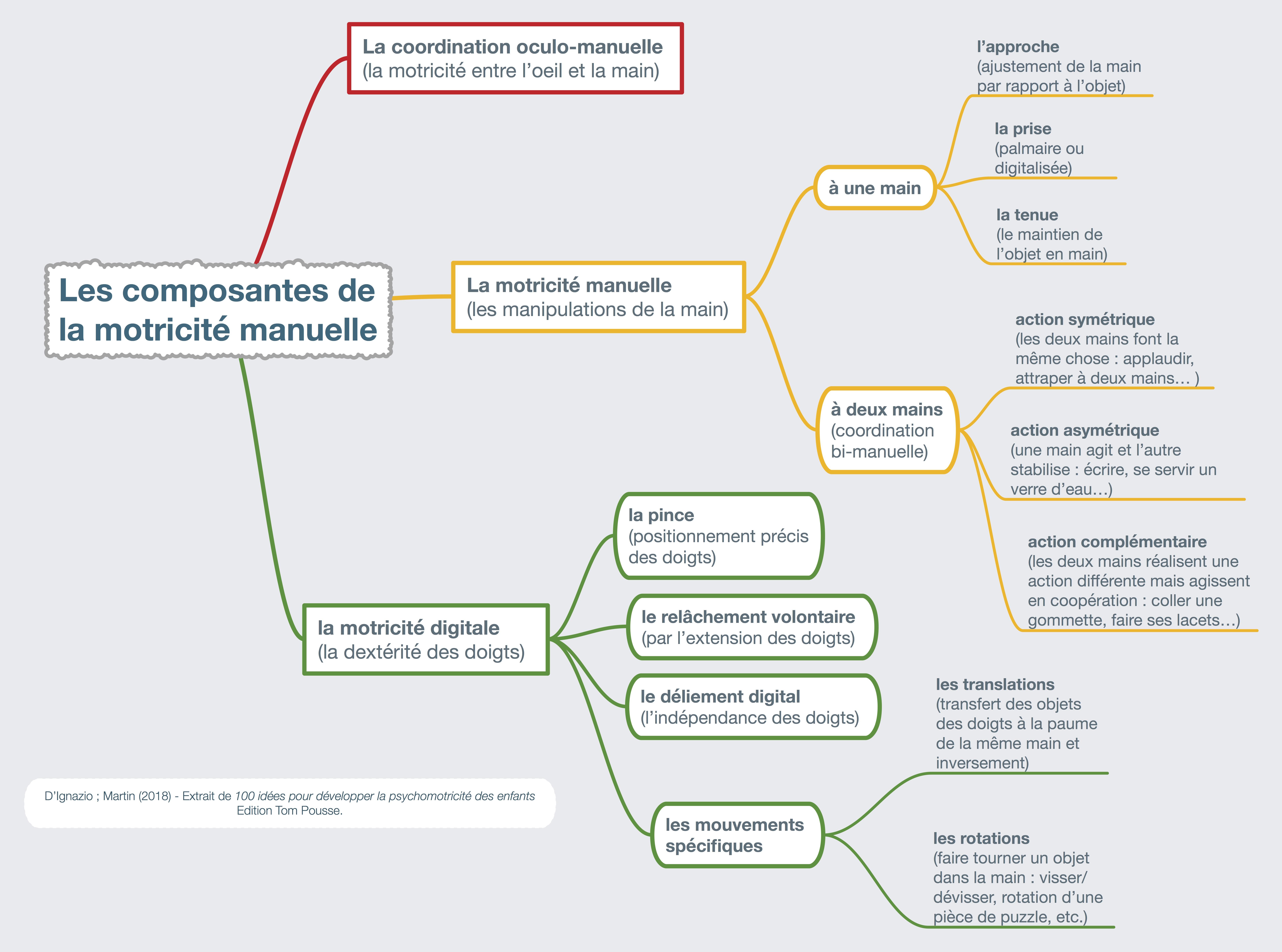 La Motricité Fine - Modélisation des composantes [D'Ignazio-Martin-100 idées pour developper la psychomotricité]