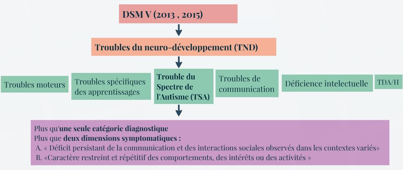 Classification TSA DSM V