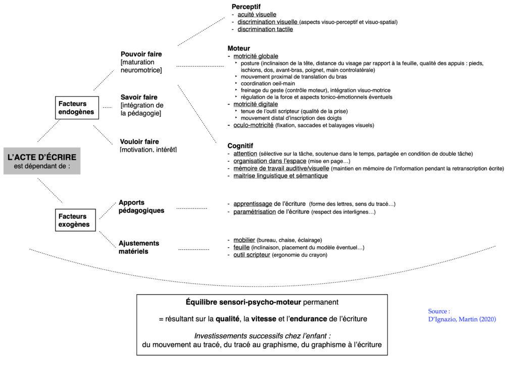 facteurs écriture psychomotricité